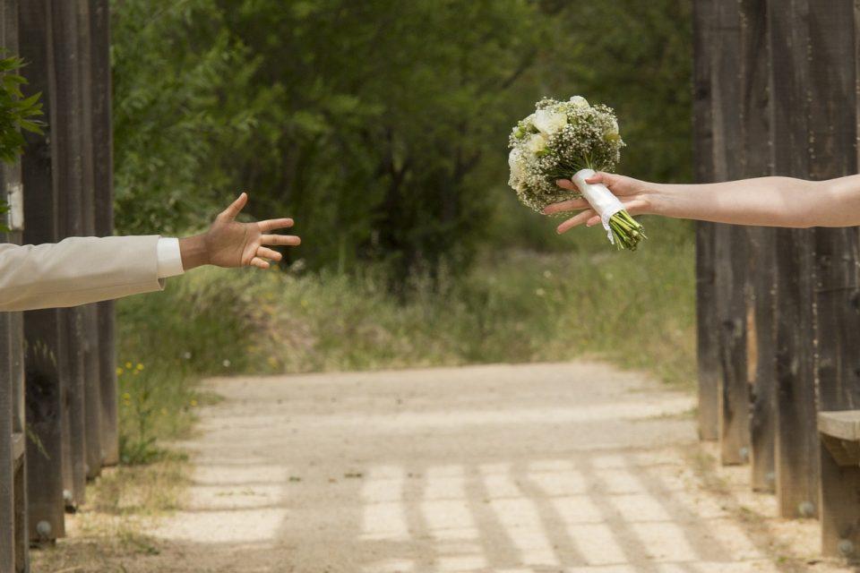 צלמים לחתונות